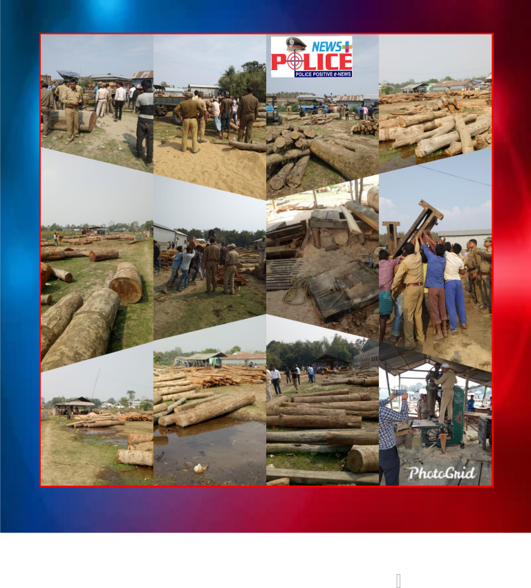 Assam Police and Forest Officers seized wooden logs of different sizes