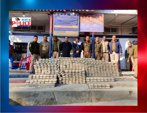 Mizoram Police seized drugs and arrested the truck driver