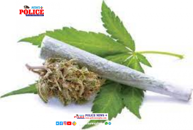 Shahdol police caught the accused with about two kg of ganja